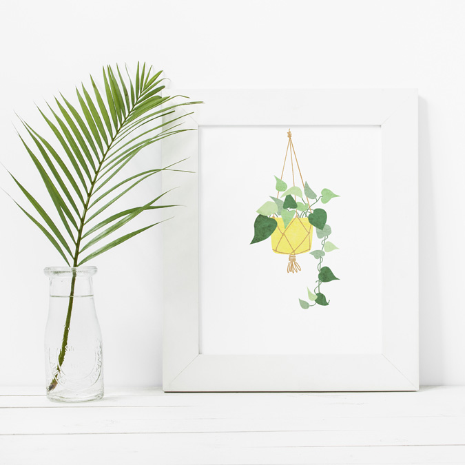 plantillustration
