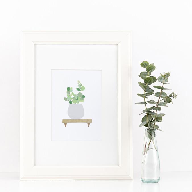 succulents1